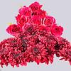 Red Chrysanthemums & Pink Roses