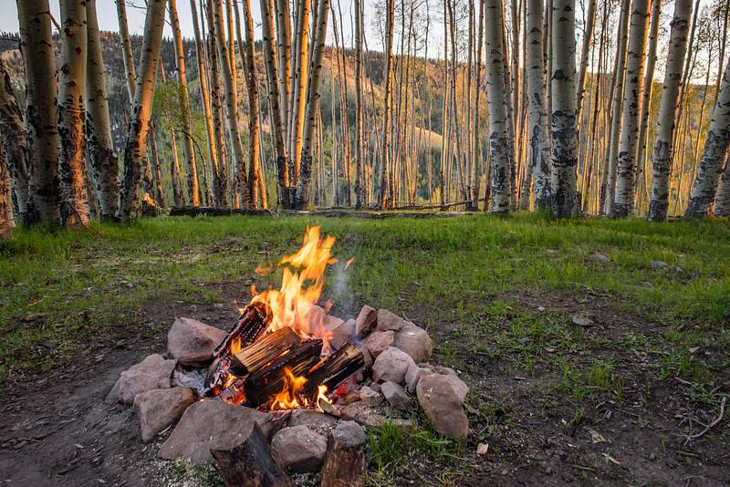 Camp at Hillside Hide-away