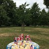 4th of July picnic in Hyde Park