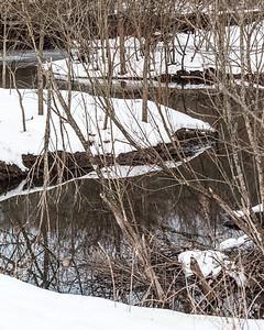 Moen Creek - Beaver Dam
