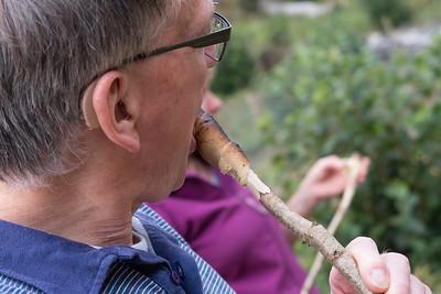 woodcraft at aysgarth (37)