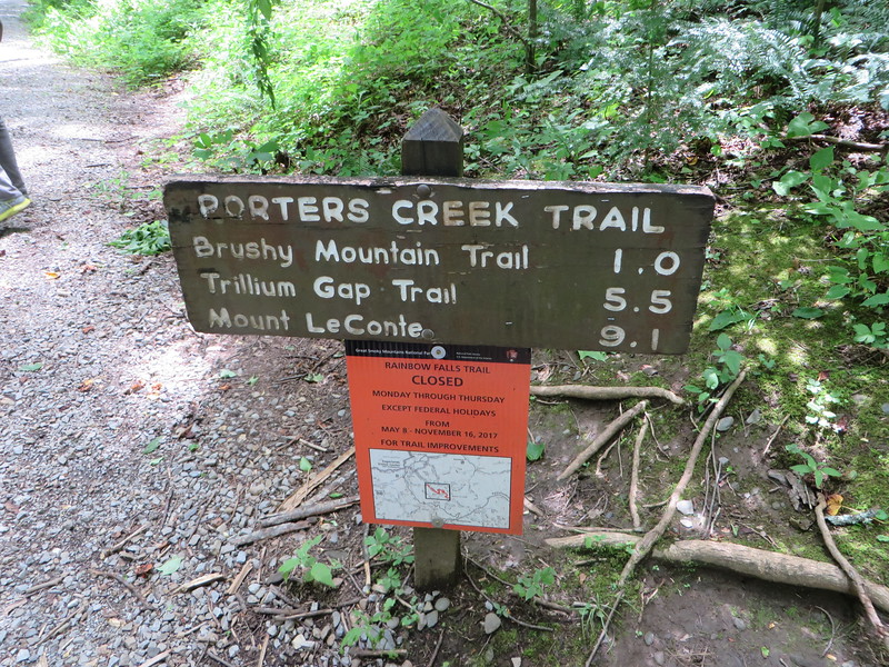 Hike in Smokey Mountains - Gatlinburg TN