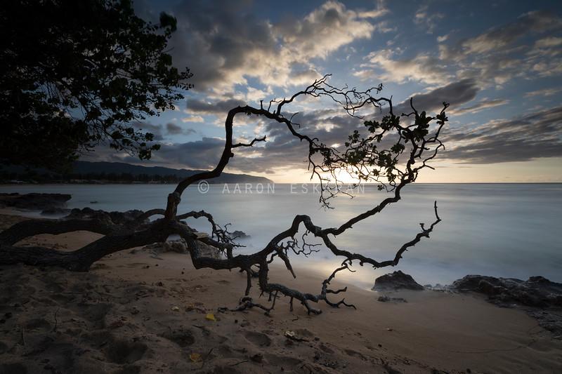 Sunset in Haleiwa
