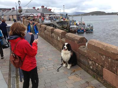 3 scotland september (12)