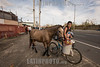 Puerto Rico : San Juan , PR. A boy and his neighbor carrie water for his horses in Pinero Av after hurricane Maria hit the island / Hurricane Maria slams Puerto Rico / Puerto Rico : Hurrikan Maria verwüstet Puerto Rico © Rob Zambrano/LATINPHOTO.org