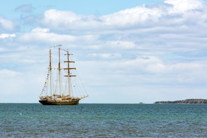 Tall ship in Rose Bay