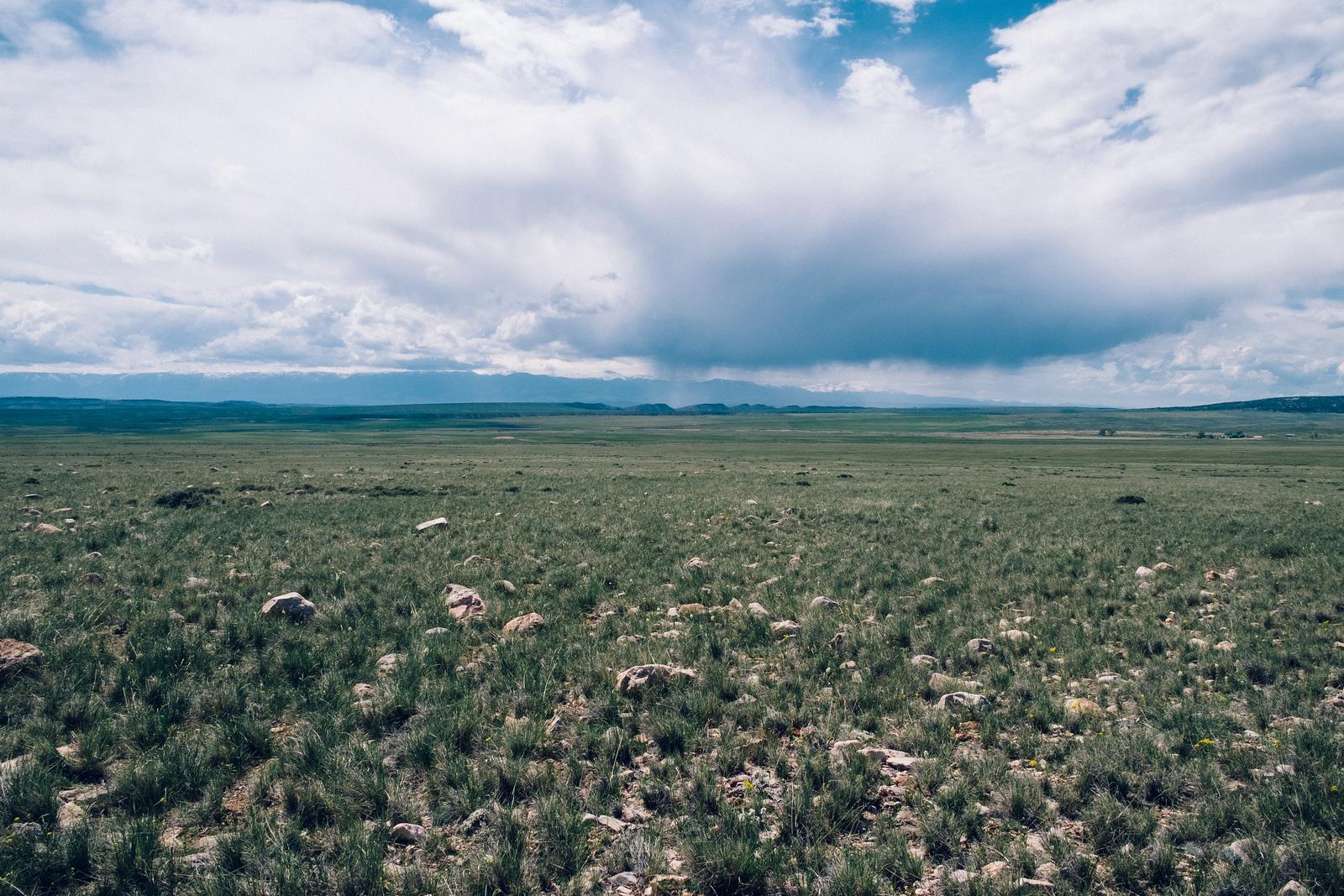 Bowler Flats Montana
