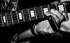 20170603 Harp -- Adler and Band -- Harpalooza -- Moondogs-6