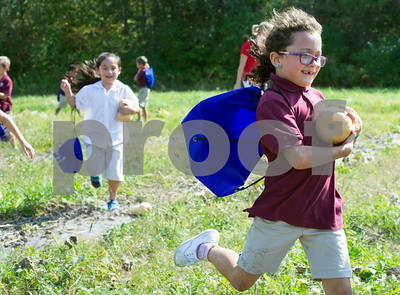 Robert Layman / Staff Photo  Christ the King student Greta Courcelle runs happily away with a squash in the fields behind the Rutland Regional Medical Center Wednesday afternoon. Guided by the non-profit Come Alive Outside, students from regional schools planted squash in the spring but very few made it to harvest due to hungry deer and other environmental factors. But that didn't stop Andy Paluch, CAO director, from making sure squash was supplemented so every kid could get a pick in the harvest.