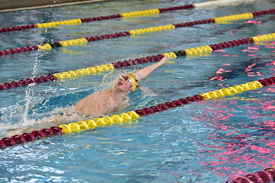 Swimming & Diving Action