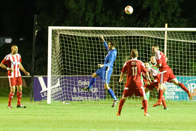 Thurlow Nunn Premier League, Bantham