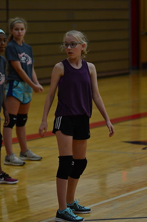 Jr. Cardinal Volleyball Camp
