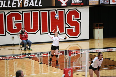 Volleyball vs. Northern Kentucky - Sept. 29, 2017 (Kroynovich)