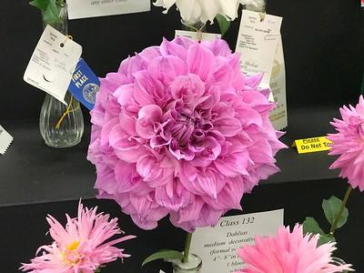 Dixie Classic Fair - Friday Flower Show