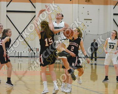 Mansfield - Wellesley Girls Basketball 3-3-18