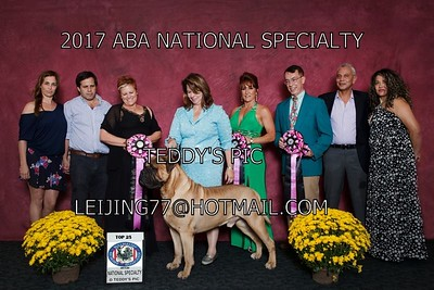 2017.ABA NATIONAL.WIN PROOFS