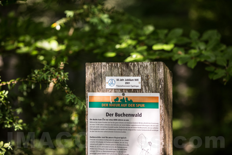 Hinweistafel Naturlehrpfad in 4622 Egerkingen © Patrick Lüthy/IMAGOpress.com
