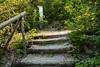 Wanderweg jakobsleiter in 4622 Egerkingen © Patrick Lüthy/IMAGOpress.com