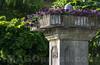 Dorfbrunnen in 4622 Egerkingen © Patrick Lüthy/IMAGOpress.com