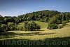 Unterwald in 4622 Egerkingen © Patrick Lüthy/IMAGOpress.com