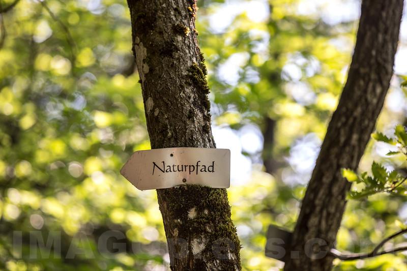 Hinweistafel Naturpfad in 4622 Egerkingen © Patrick Lüthy/IMAGOpress.com