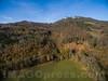 Herbstwald bei Oensingen © Patrick Lüthy/IMAGOpress.com