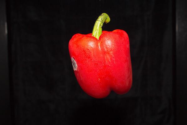 Moule_John_Flying Pepper - 1