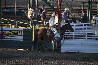 Tri County Fair-Broncs