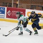 ASAP20439_Game 2 - (MM) Ann Arbor Wolves Vs Pelham Panthers