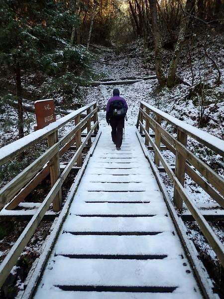 Jacksonville Forest Park Oregon