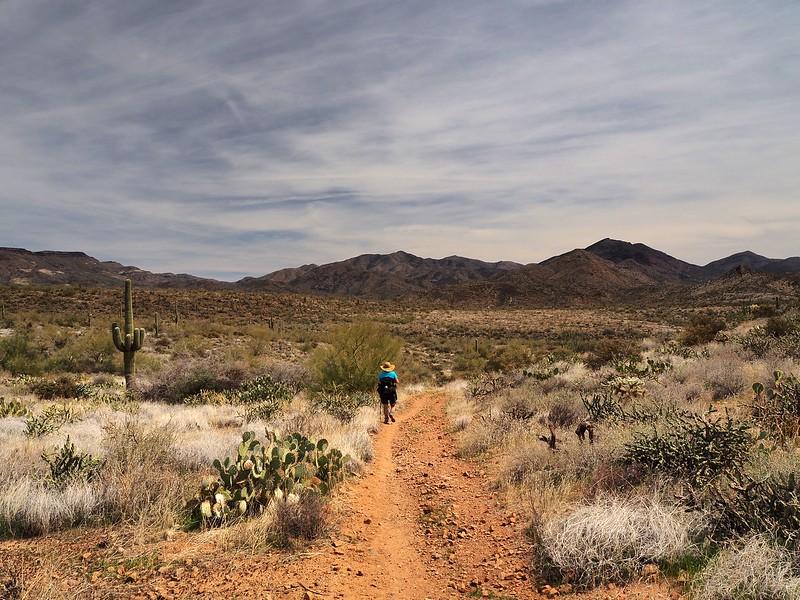 Spur Cross Ranch Maricopa County Arizona