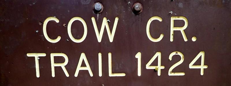 Cow Creek Umpqua National Forest Oregon
