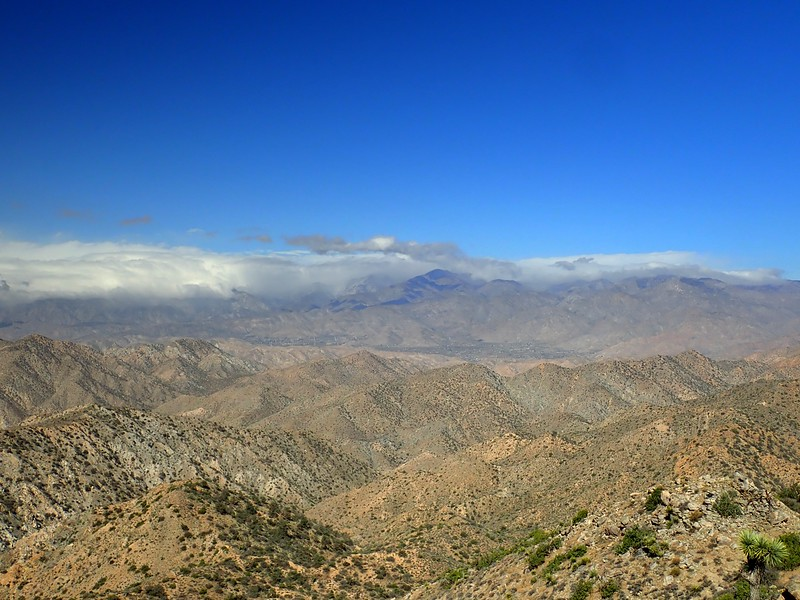 Warren Peak Joshua Tree National Park California