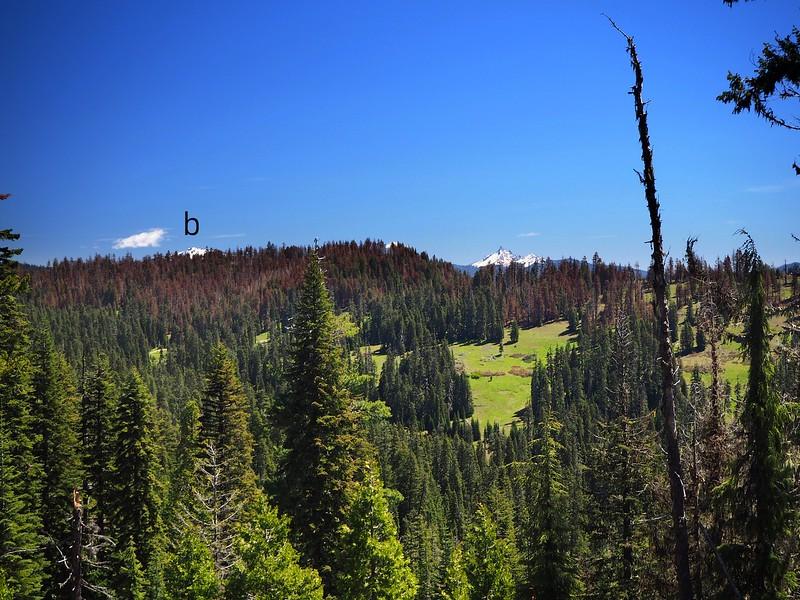 Anderson Camp Trail Rogue-Umpqua Divide Wilderness Oregon