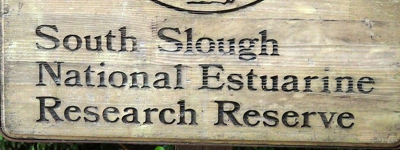 South Slough National Estuarine Research Reserve Oregon