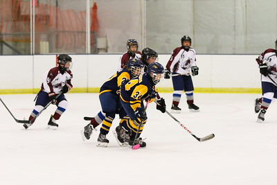 ERIE JR. OTTERS Vs AMHERSTBURGH