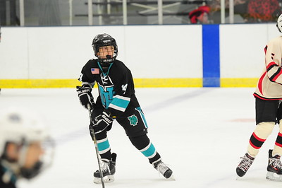 NOVI ICE CATS Vs NORTH PITTSBURGH WILDCATS (Cons)