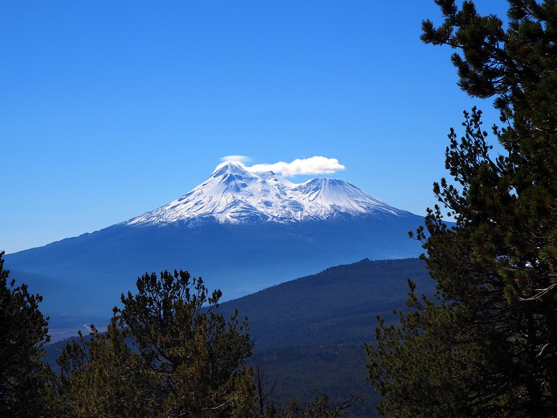 Goosenest Mount Shasta Northern California