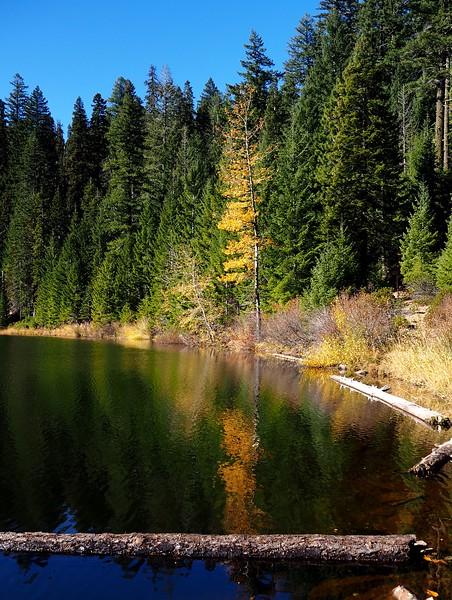 Miller Lake Siskiyou Crest Sturgis Fork Oregon