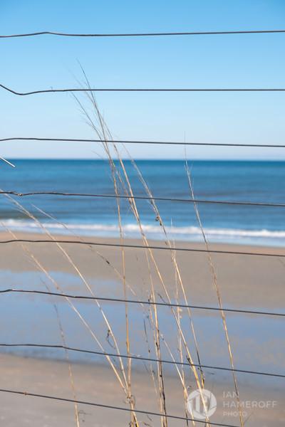 Sea Fence