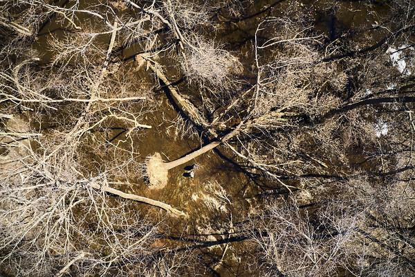 2019 UWL Drone Floodplain Forest Goose Island Park 0018