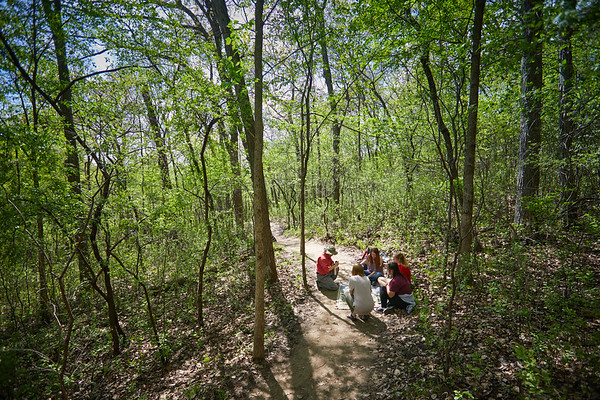 Namyun Kil leads a forest bathing class into Hixton Forest.