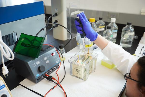 2019 UWL Spring Microbiology 0026