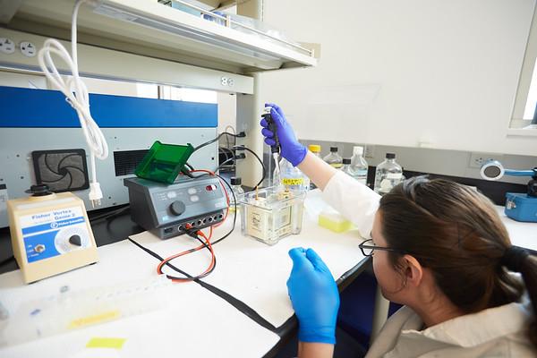2019 UWL Spring Microbiology 0031