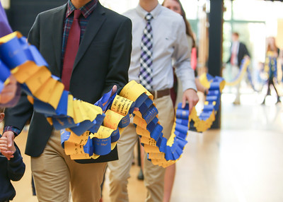 Steward's Chain of Traditions Continues to Grow!