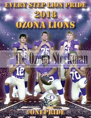 2018 OHS Football Individual Photos & Meet the Lions