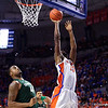 Florida Gators Mens Basketball Michigan State Spartans