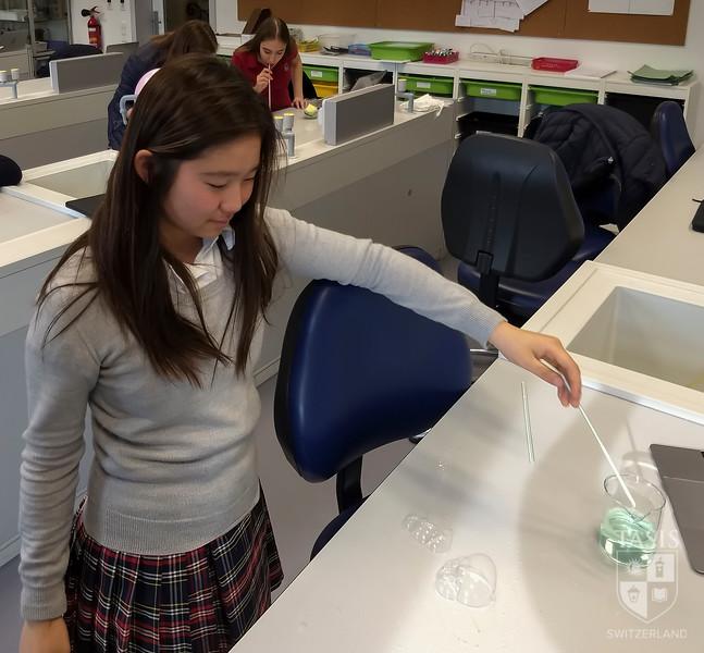 8th grade lab_6.JPG