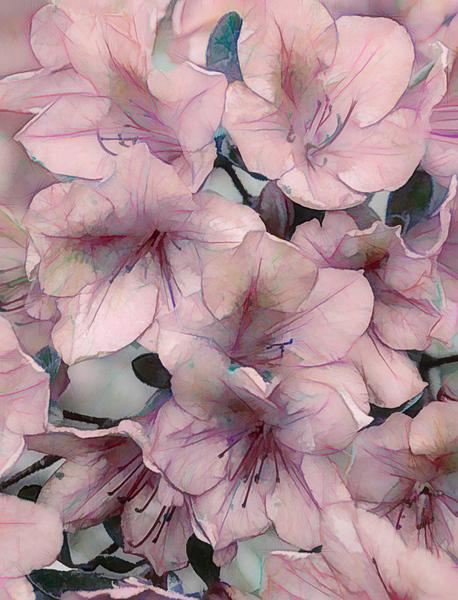 celebrate spring - Linda Harris - PSA Score 12