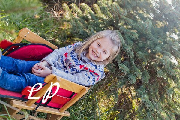 Shamp Family Christmas 2018 (3 of 23)